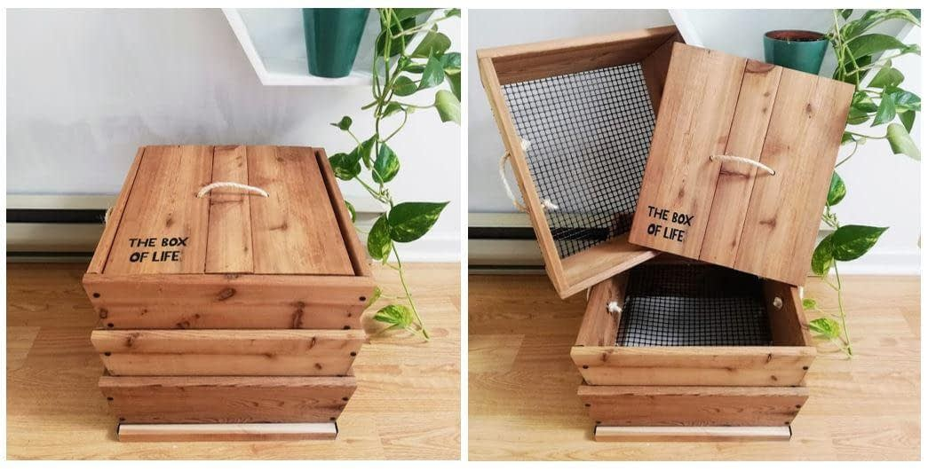 Build a Worm Studio & Learn All About Vermicomposting